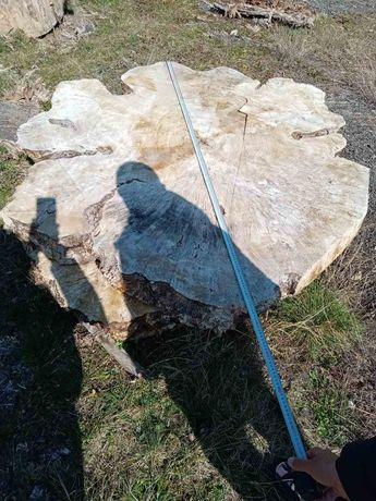 Шайби от топола с размери от 1.35 м до 1.95 м
