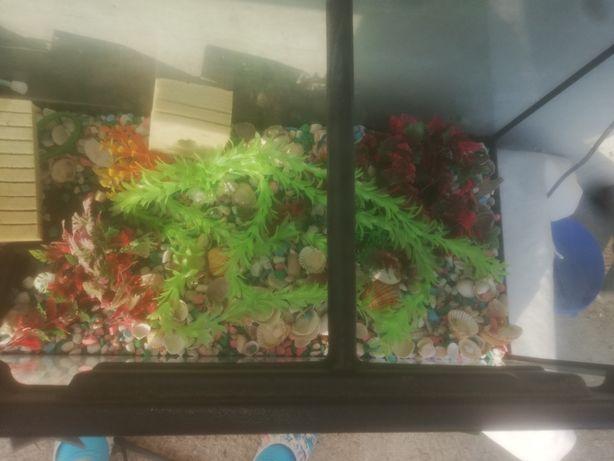 Vând acvariu