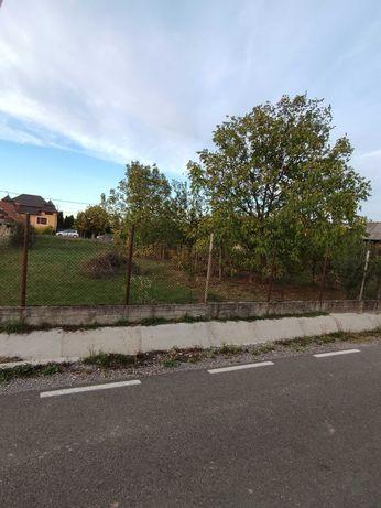 Vând sau Schimb, teren in Uileacu de Cris cu teren in Osorhei