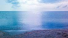 Жер. Участок.Тениз жагалаудан береговой 1 линия экологиялык таза аудан
