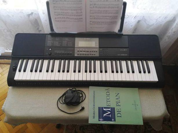 Casio ctx 800 (nouă) - orga (clape)