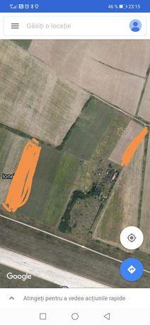 vand 3 hectare in spatele aeroportului traian vuia