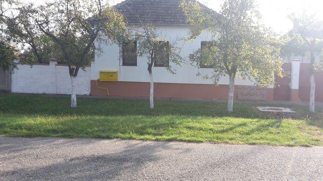 Casa mare Vladimirescu