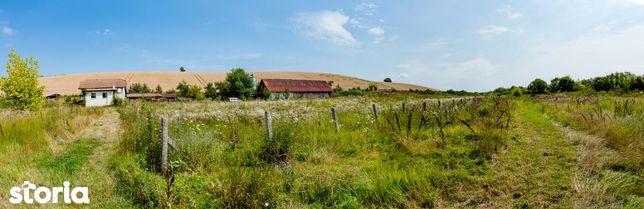 Casa + 2.5 hectare - Zabrani - Jud. Arad - Posibilitate ferma