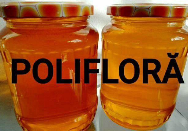 Miere polifloră  100% naturală și familii de albine