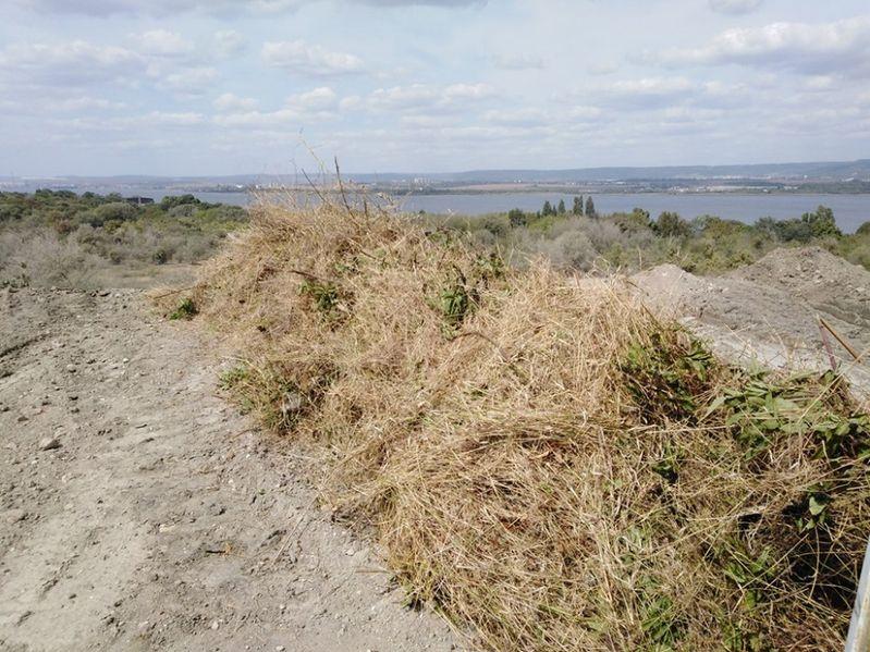 извозване на трева храсти клони разумните цени гр. Варна - image 1