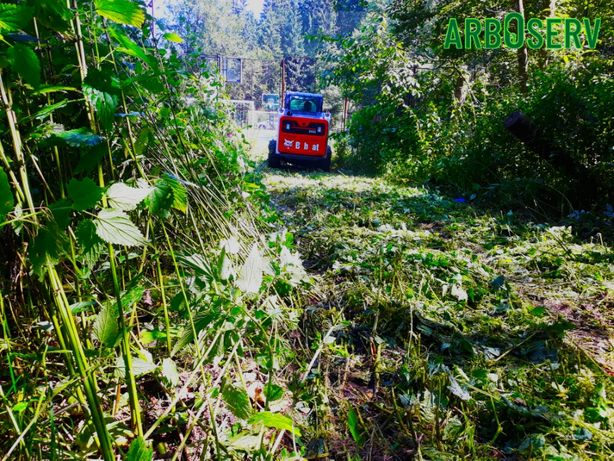 Defrisari taiere cosire iarba - arbusti cu tocare si evacuare resturi