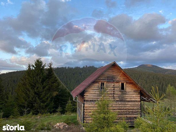 Cabana si teren de vanzare 12690mp, Poiana Horea / Beliș 0% COMISION