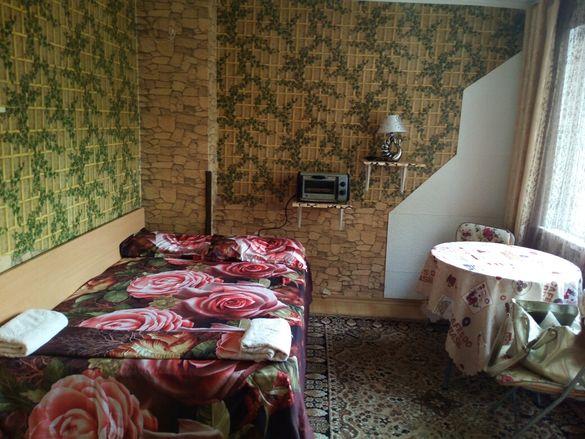 Стая и голяма тераса до Медицински институт - 230 лв.