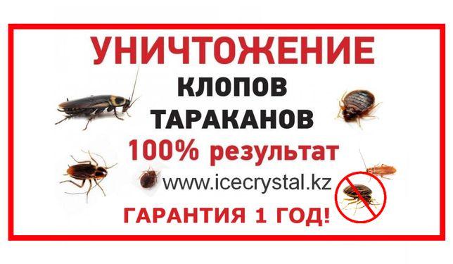 Дезинфекция - ПРОФЕССИОНАЛЬНОЕ уничтожение клопов! тараканов! Муравьев