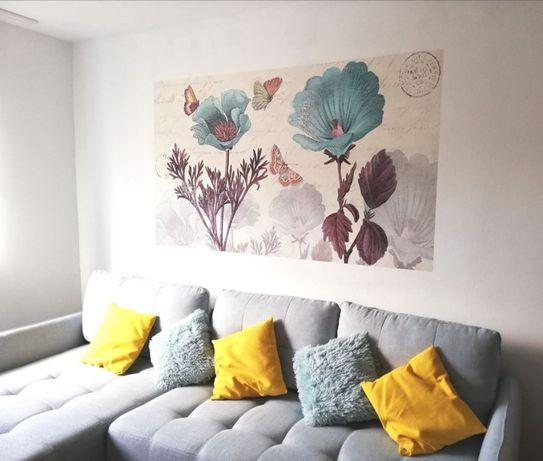 Pictura perete, mural interior, print pe perete cu imprimanta