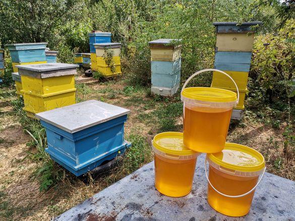 Пчелен мед,восък,прополис