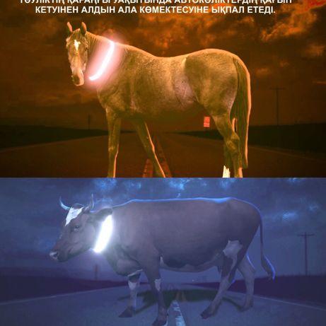 Светоотражающие ленты для домашних скотов