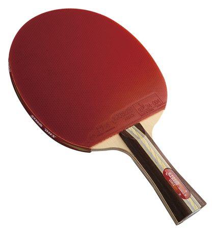 Paleta tenis de masa DHS 3002