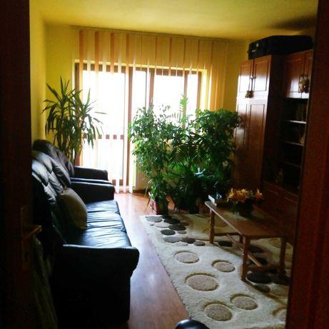 Apartament  Campina