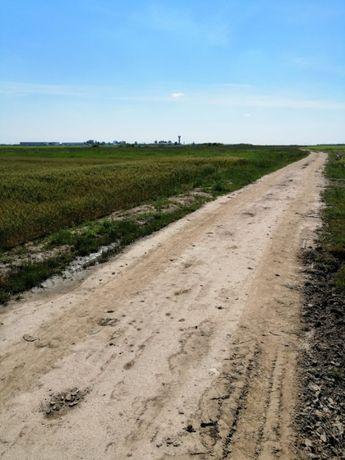 Teren extravilan Autostrada Bucuresti-Pitesti km 98 Cateasca jud Arges