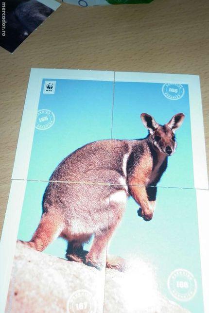 Vând stickere cu animale Edeka.