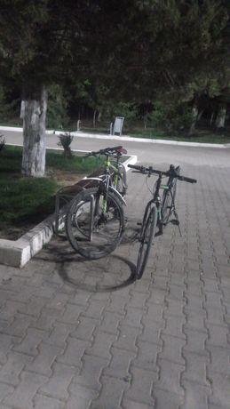 Вело екі велик сатылады