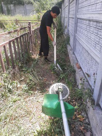 Уборка территория.косить трава.отрезать дерева