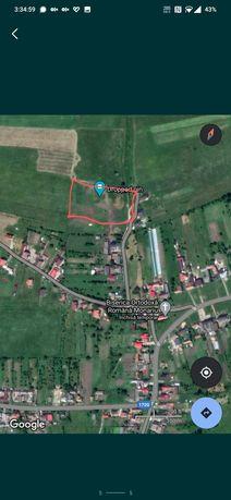 Teren 120 arii Monariu 9 km de Bistrita