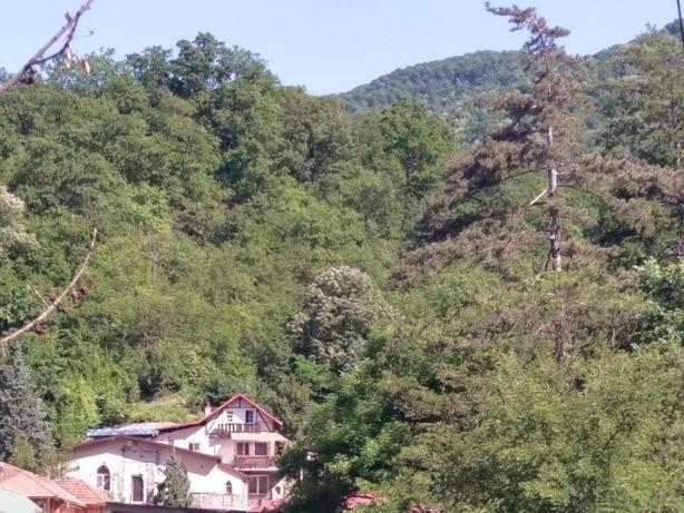 Casa Bobi - de vanzare duplex + 4200 mp teren