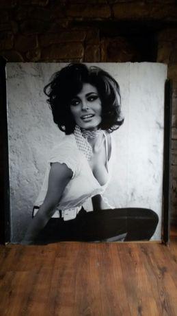 Постер/стикер/снимка за стена на София Лорен Sophia Loren