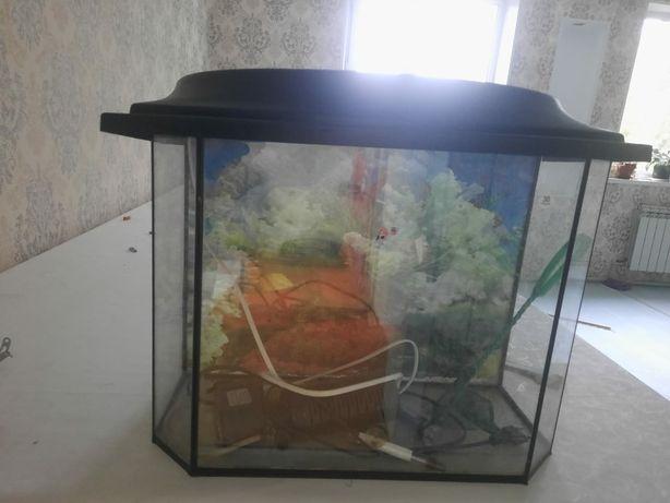 Продам аквариум в отличном состоянии  все
