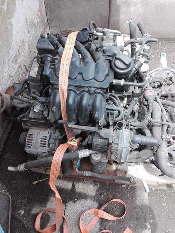 Motor Polo 1.4