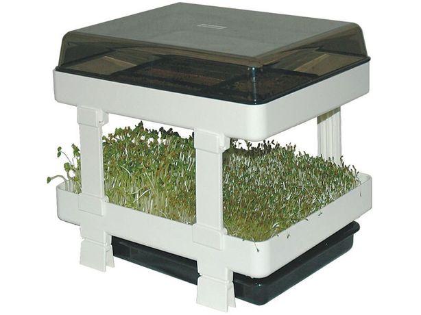 Tăviță germinare f puțin folosita