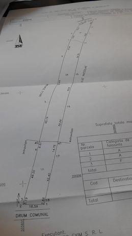 Intravilan Cateasca- 3 km de A1