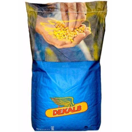 Seminte/samanta porumb DEKALB DKC 5068