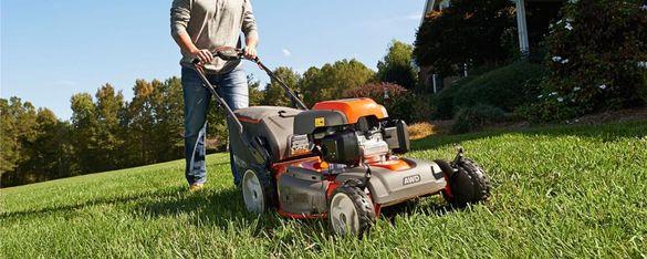 Градинарски услуги, опасни дървета, почистване на дворове