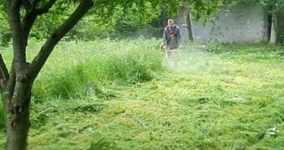косене на дворове рязане на храсти и дървета