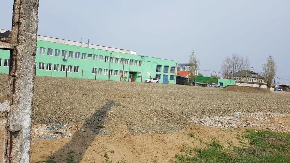 Vand / Inchiriez  teren intravilan zona industriala Sannicolau Mare - imagine 1