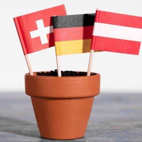 Ofer meditatii de limba germana - ONLINE