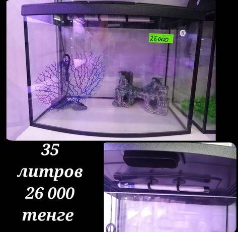 Заводской аквариум