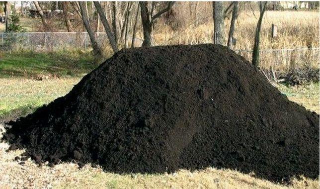 Pamant negru vegetal