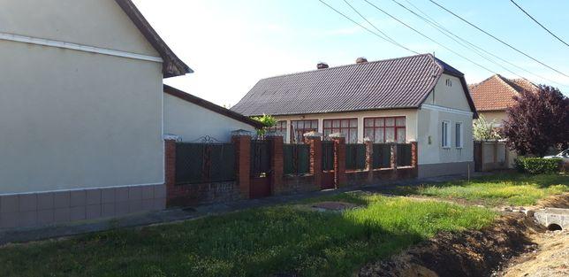 De vînzare direct de la proprietar 2 case +anexe în Ianova com.remetea