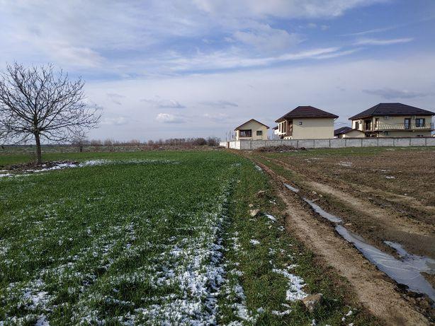 Teren Posta comuna Cernica teren Ilfov