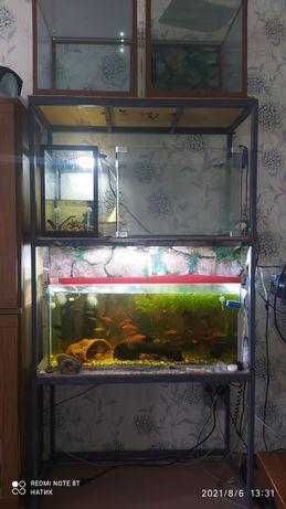 Продам металлическую стойку для аквариумов!