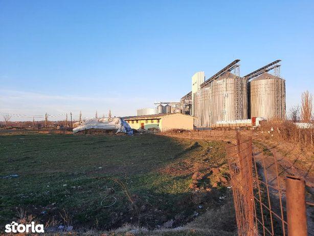 De vanzare cladire tip depozit in gara Segarcea Dolj - 55000 euro