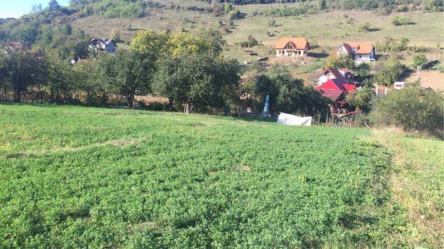 Vand teren intravilan in Bozeni (Corunca)