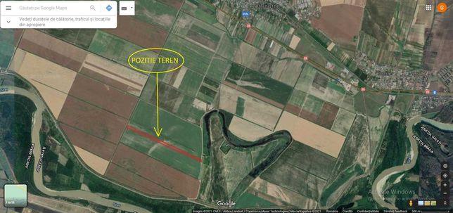 Vand 3 ha teren agricol Branistea