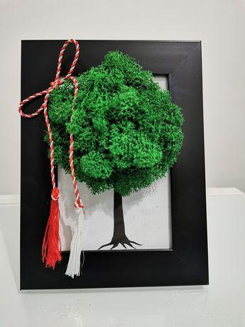 Tablou copacul vieții cu licheni stabilizati