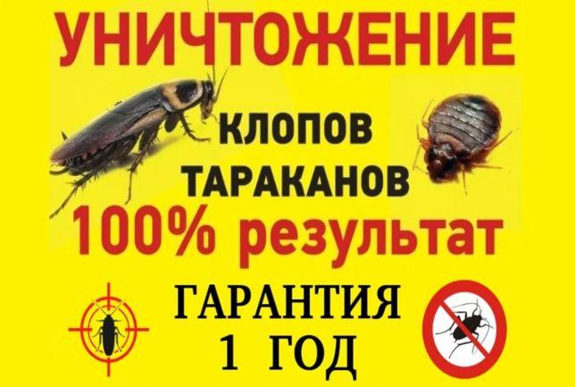 Уничтожение клопов ДЕЗИНФЕКЦИЯ ,крыс, мышей