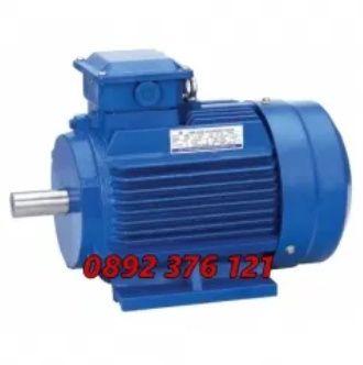 1-4kw Ел Двигател Руски Монофазен електро мотор циркуляр месомелачка