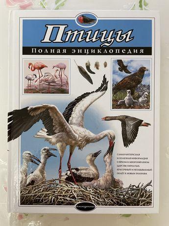 Птицы энциклопедия