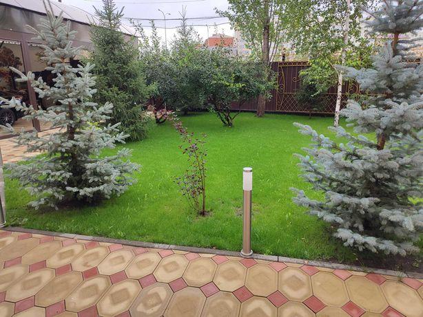 Ландшафтный дизайн Озеленение