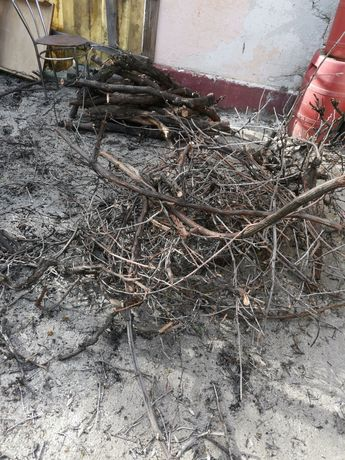 Donez lemne vreascuri din tăierea viței