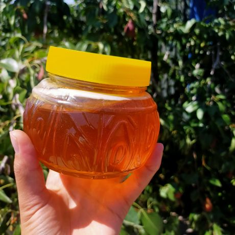 Свежий мед с Восточного Казахстана